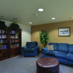 Entertainment room with blue comfortable couch and library